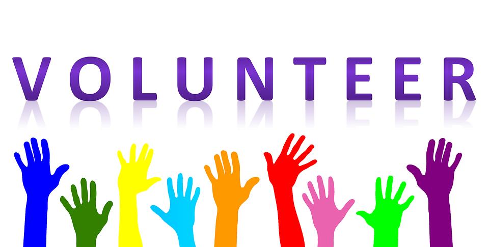volunteer-20519